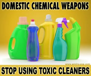 Stop Using Toxic Cleaners