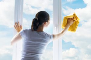 Non-Toxic Window Cleaner